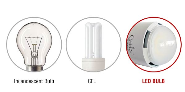 incandescent-cfl-led-difference